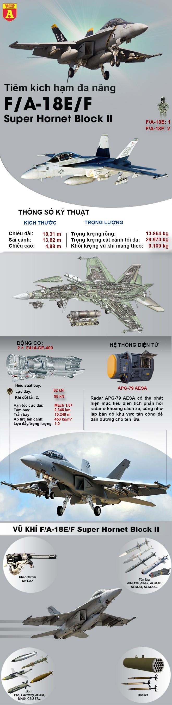 [Infographic] Khi 'Gấu bay Tu-95MS' Nga được hộ tống bởi 'Ong bắp cày F-18E/F' Mỹ ảnh 2
