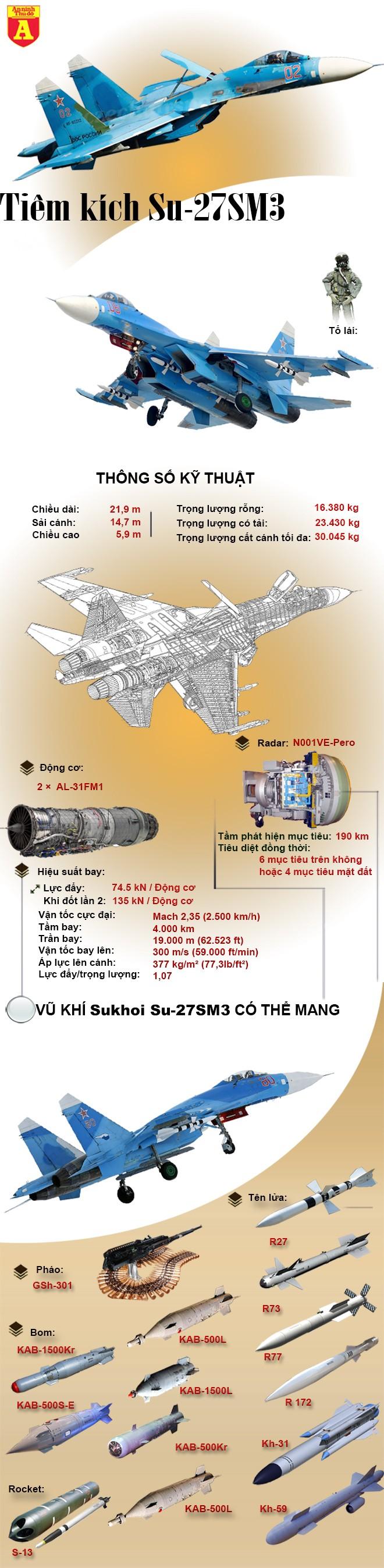 [Infographic] Thử lửa tại Syria, Su-27SM3 khiến Mỹ đi từ bất ngờ đến thán phục ảnh 2