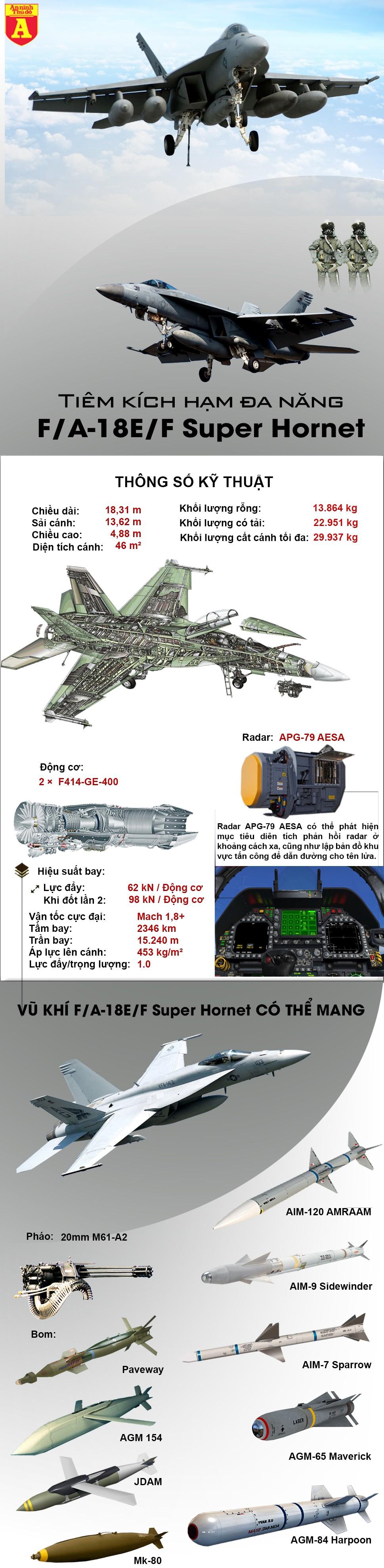[Infographic] Loại chiến đấu cơ mạnh nhất của hải quân Mỹ khiến khủng bố IS kinh hoàng, Syria lo sợ ảnh 2