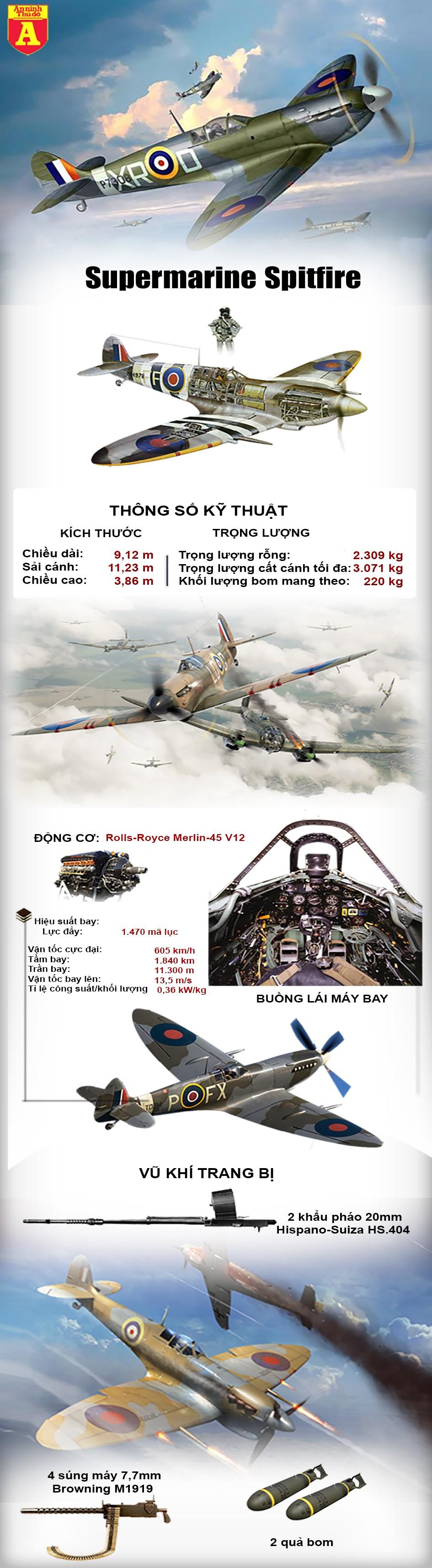 [Info] Phi công Anh bay vòng quanh thế giới trên tiêm kích huyền thoại thời Thế chiến II ảnh 2