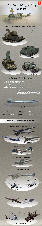 [Info] Mỹ nghi ngờ Nga âm thầm chuyển sát thủ diệt máy bay Tor-M2U tới Libya ảnh 3
