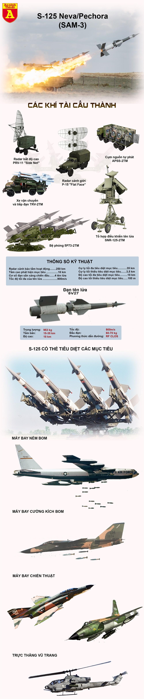 [Info] Ukraine dùng tên lửa phòng không từng bắn hạ máy bay tàng hình Mỹ để đối phó Nga ảnh 4