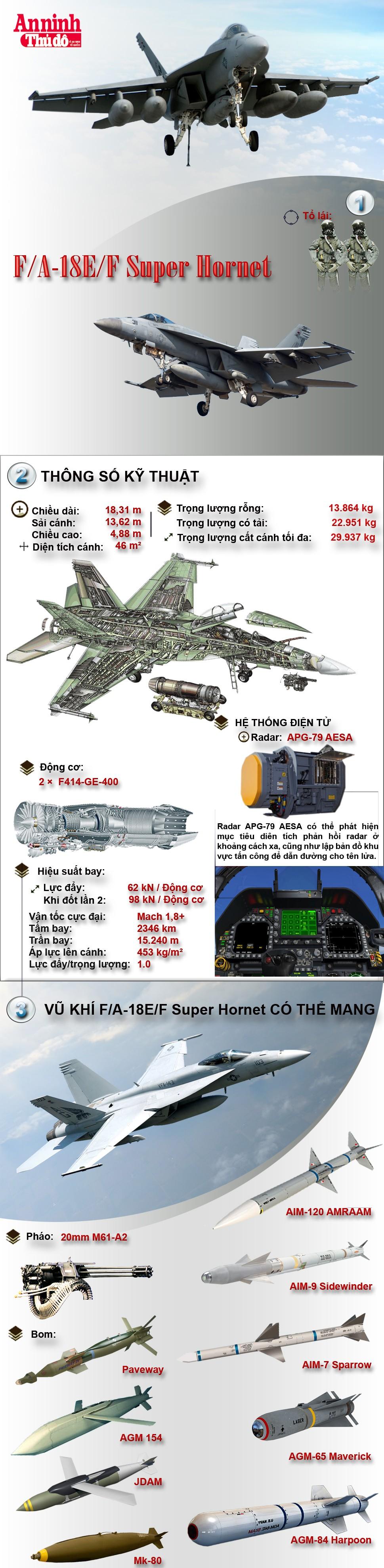[Infographic] Tiêm kích hạm hạng nặng mạnh nhất thế giới - Boeing F/A-18E/F Super Hornet ảnh 2