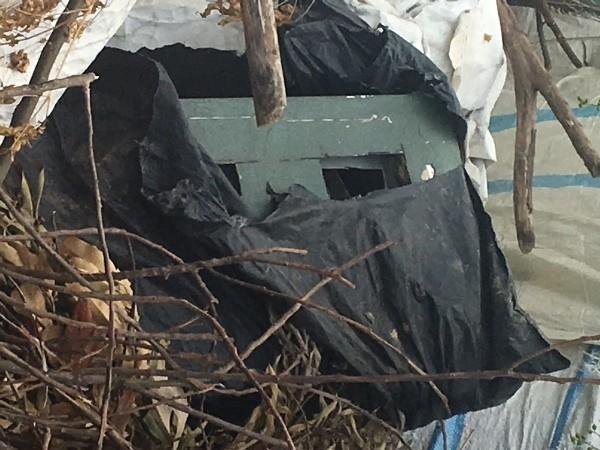 Chiếc két sắt được Toàn giấu trong cây khô ven đường liên thôn xã Tiên Dược