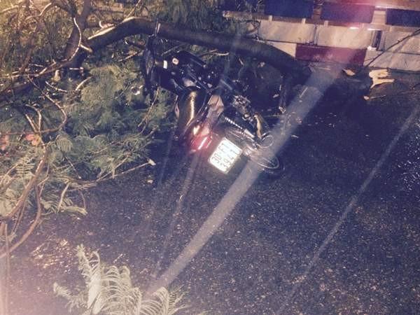 Chiếc xe bị cành phượng trùm đè xuống đường sau trận mưa lớn
