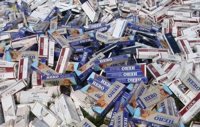 Hàng nghìn cây thuốc lá bị cơ quan chức năng thu giữ