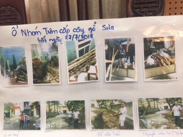 Ổ nhóm trộm cắp gỗ sưa bị CATP Hà Nội phát hiện, bắt giữ