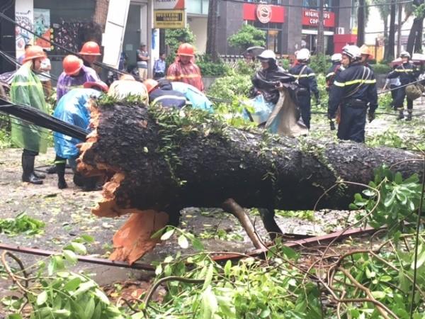 Lực lượng cứu hộ, cứu nạn đang khắc phục sự cố do mưa bão gây ra