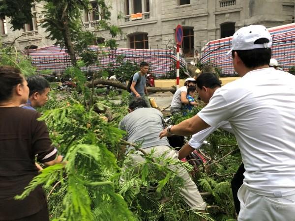 Người dân nỗ lực tìm kiếm người mắc kẹt trong đám cành lá cây cổ thụ