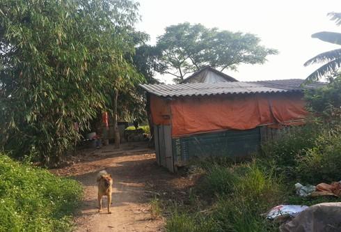 Căn chòi làm vườn của gia đình nạn nhân