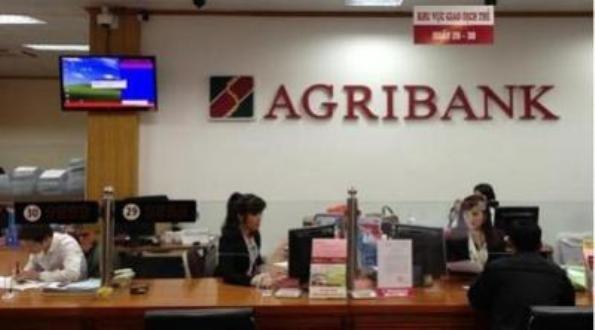 Agribank phát triển cung ứng nhiều sản phẩm dịch vụ về vay tiêu dùng, vay tín chấp...