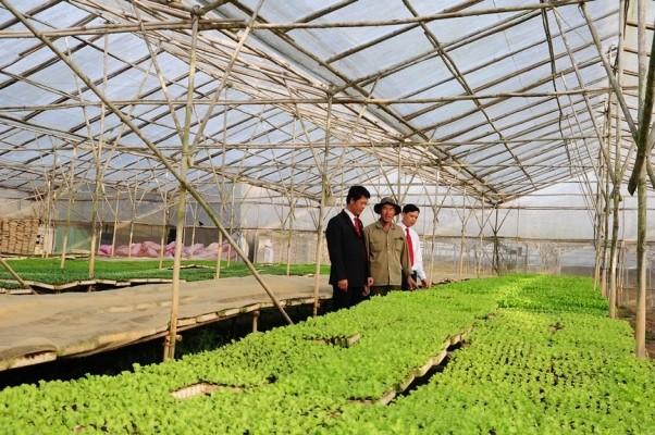 Nguồn vốn Agribank thúc đẩy kinh tế xanh phát triển