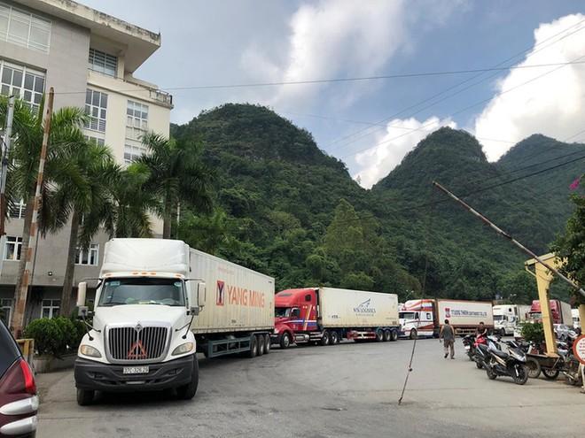 Kim ngạch xuất nhập khẩu với Trung Quốc bị ảnh hưởng lớn do dịch Covid-19