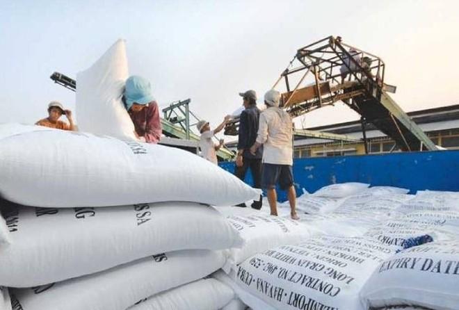 Nhiều doanh nghiệp không thực hiện hợp đồng cung cấp gạo dự trữ quốc gia nhưng lại mở tờ khai xuất khẩu gạo