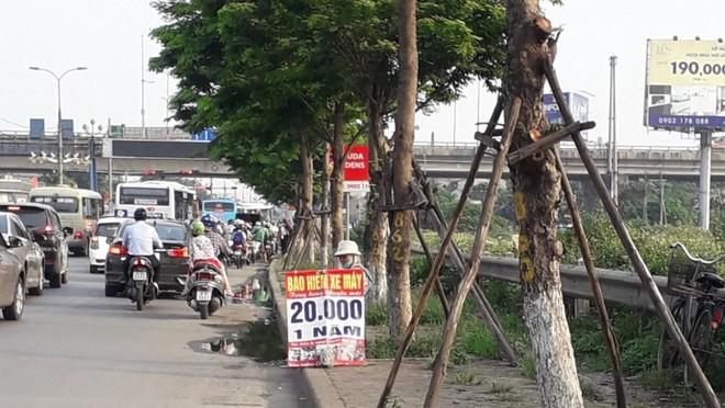 Các loại bảo hiểm trách nhiệm dân sự bắt buộc của chủ xe cơ giới được bán tràn lan khắp nơi với giá siêu rẻ