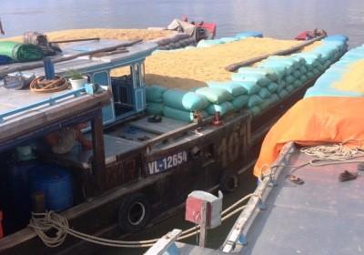 3 thuyền nhập lậu thóc bị cơ quan chức năng thu giữ