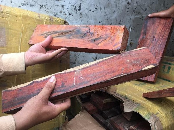 Tất cả gỗ đều được đánh dấu chữ A