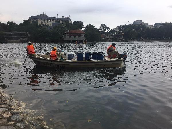 Nhân viên Công ty TNHH MTV Thoát nước Hà Nội sử dụng chế phẩm Redoxy-3C xử lý ô nhiễm ở hồ Thiền Quang