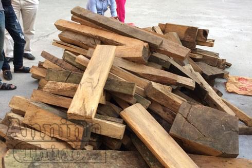 Số gỗ mua từ Sơn La về Hà Nội tiêu thụ