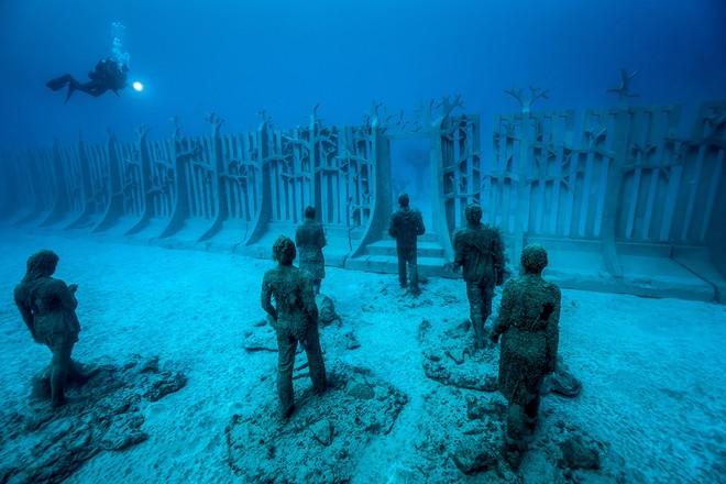 Du khách phải lặn xuống biển để tham quan bảo tàng
