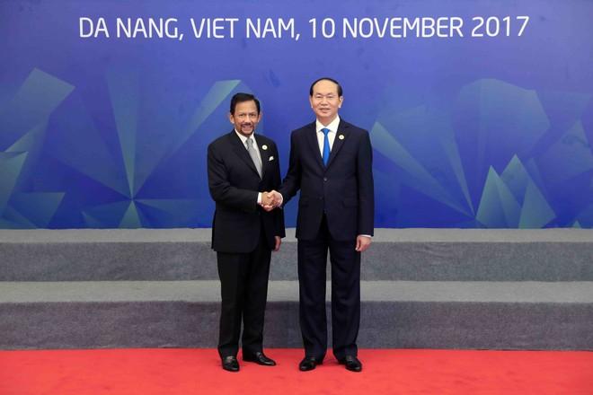 Chủ tịch nước Trần Đại Quang đón Quốc vương Brunei Darussalam, Haji Hassanal Bolkiah