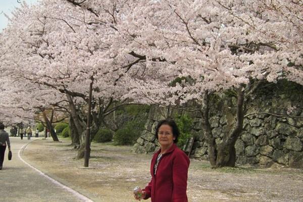Thành phố Akitakata