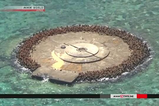 Đảo Okinotori