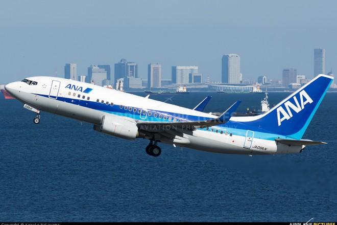 Một chiếc máy bay của hãng ANA Wings