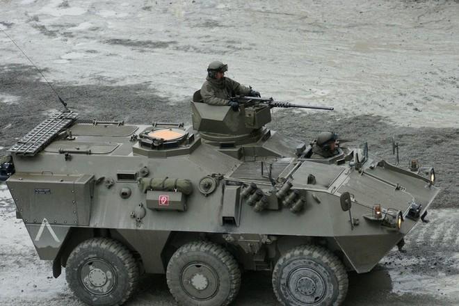 Bỉ hiện có 44 xe thiết giáp chở quân APC Pandur