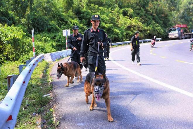 Lực lượng chức năng triển khai tìm kiếm phạm nhân Triệu Quân Sự đang lẩn trốn ở rừng Hải Vân. Ảnh: TPO