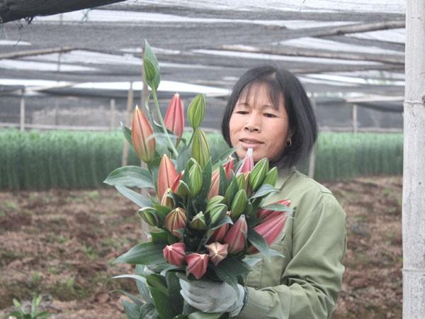 Hà Nội được mùa hoa Tây Tựu ảnh 3
