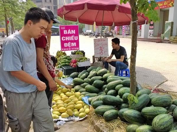 Ngỡ ngàng vì hoa quả được mùa, giá vẫn cao ảnh 1