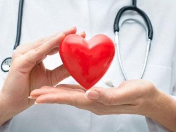 Vitamin D tăng cường sức khỏe tim ảnh 1