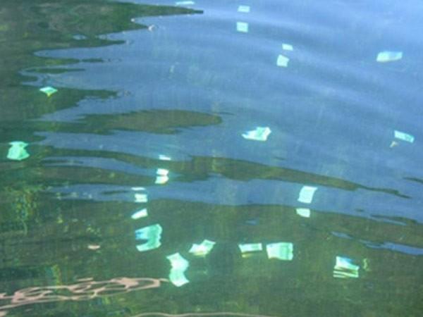 Hơn 100.000 euro trôi nổi trên sông ảnh 1