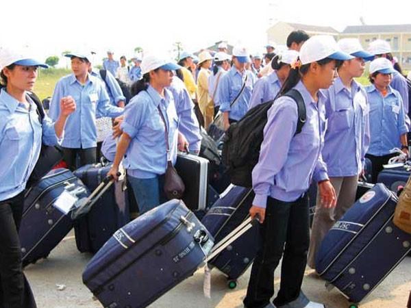 """Bất lực với lao động """"chui"""" ở Hàn Quốc? ảnh 1"""