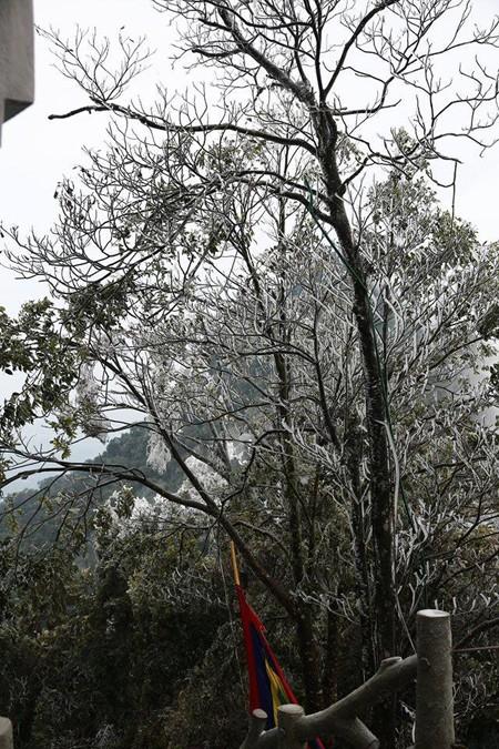 Khắc phục hậu quả, đảm bảo an toàn cho du khách nơi có tuyết rơi ảnh 2