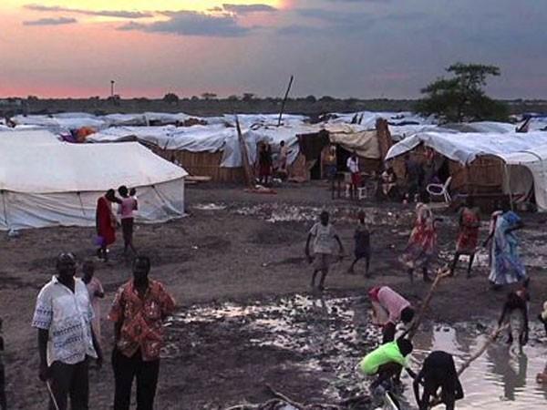 Rời khỏi khu trại tị nạn đi kiếm củi, nhiều phụ nữ ở Bentiu phải đối mặt với những mối nguy hiểm chết người