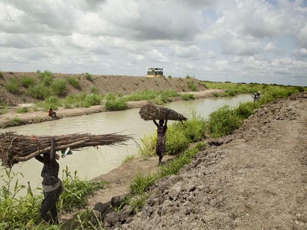 Sự thật khó tin về cuộc nội chiến ở Nam Sudan ảnh 2