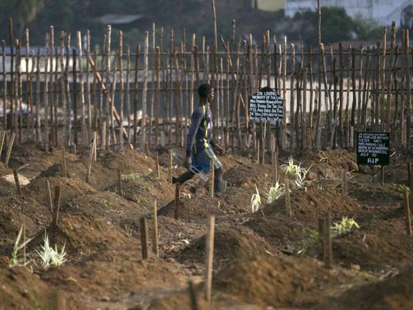 Nhiều nghĩa trang ở Freetown, Sierra Leone gần đây liên tục xảy ra hiện tượng đào trộm mộ