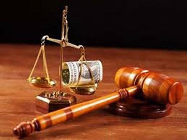 Án lệ khắc phục khiếm khuyết của pháp luật ảnh 1