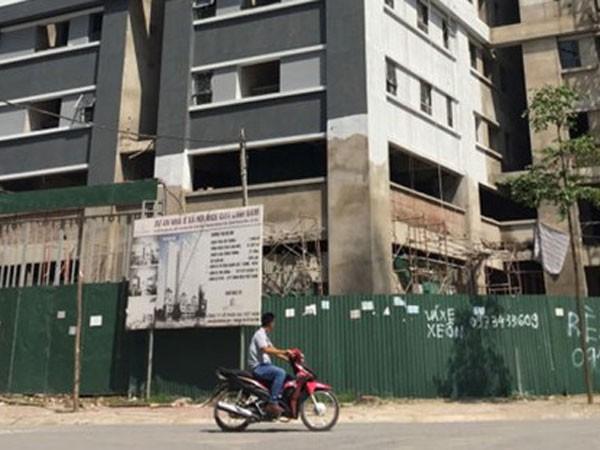 Sẽ rà soát toàn bộ dự án Rice City ảnh 1