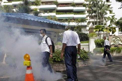 Virus Zika chủng châu Á đang hoành hành ảnh 1
