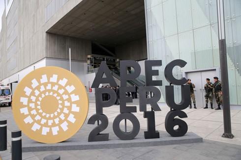 Hội nghị Cấp cao APEC 2016: Đấu tranh chống chủ nghĩa bảo hộ ảnh 1
