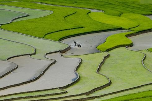 """Hình ảnh quen thuộc được lặp lại tại các cuộc thi ảnh có cùng tên gọi """"Việt Nam-Đất nước-Con người"""""""
