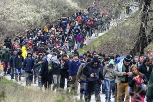 EU còn đau đầu vì người tị nạn ảnh 1