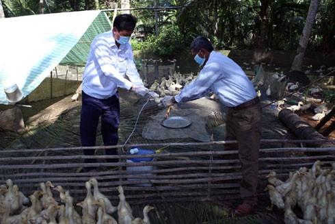 Nỗi lo lây cúm gia cầm từ Trung Quốc ảnh 1