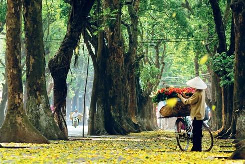 Lịch sử và ký ức phố Phan Đình Phùng ảnh 1