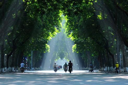 Lịch sử và ký ức phố Phan Đình Phùng