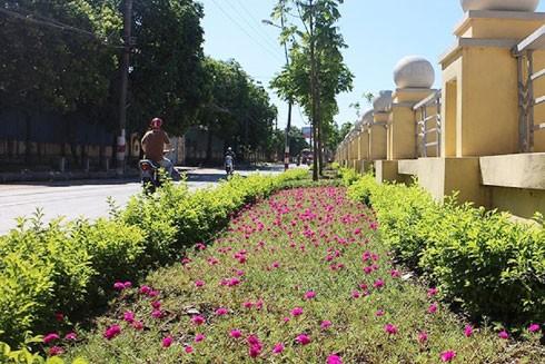 """Xã Tứ Hiệp, huyện Thanh Trì được tô đẹp bởi những """"con đường hoa"""" trải dài"""