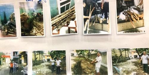 Các đối tượng trộm gỗ sưa bị Phòng Cảnh sát Hình sự, CATP Hà Nội bắt giữ